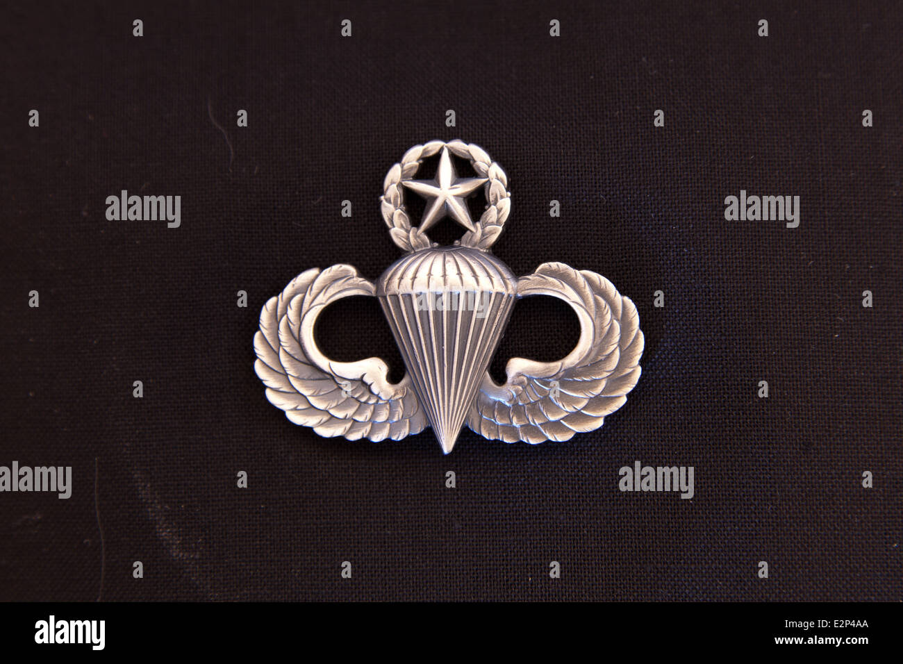 Master Airborne wings - Stock Image