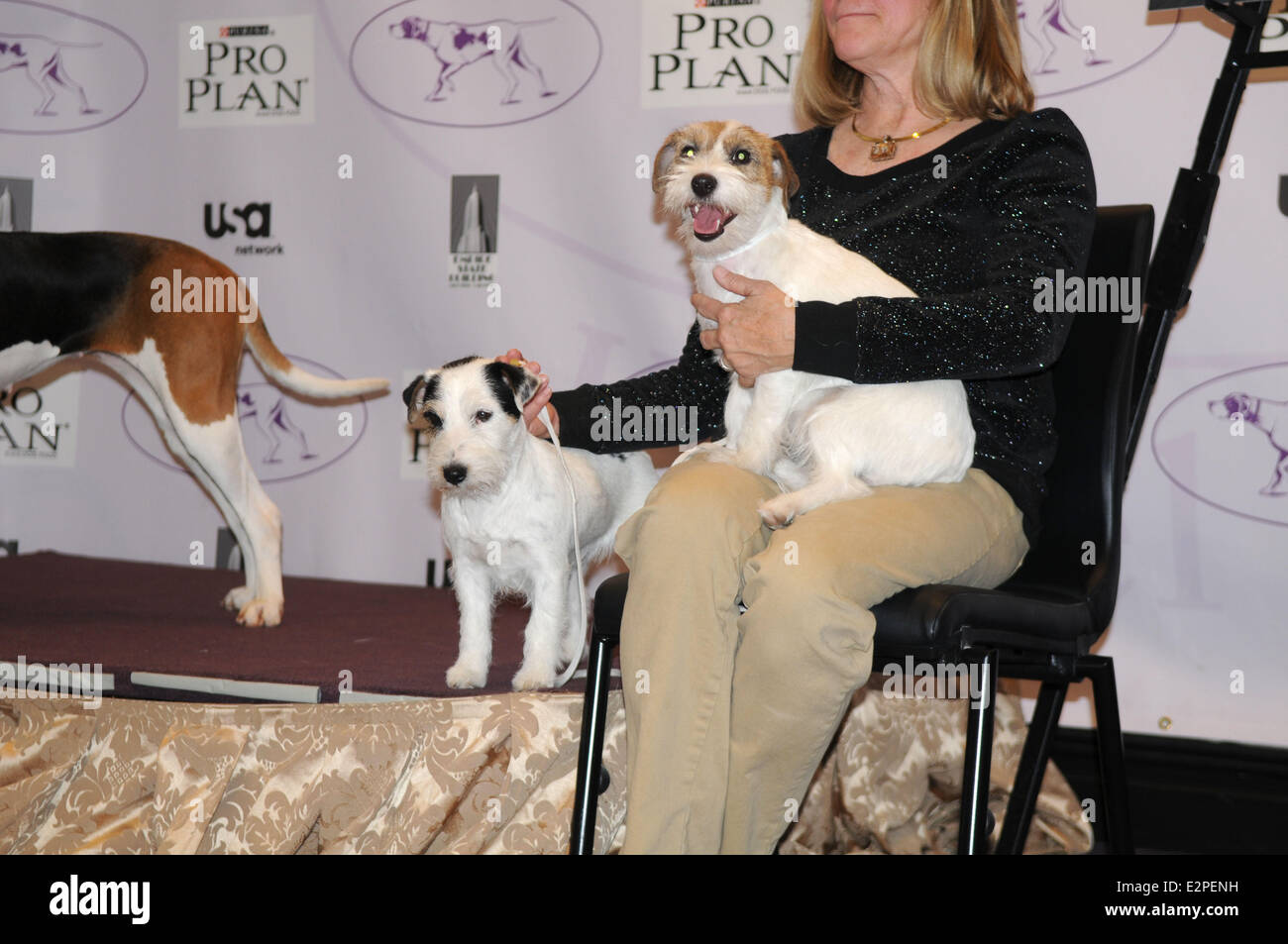 The Westminster Kennel Club 137th Annual Dog Show - Press Conference at Affinia  Where:  New York City, New York Stock Photo