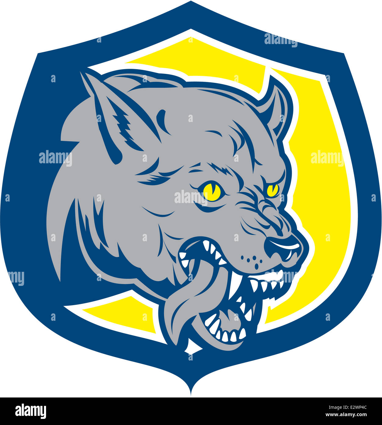 Illustration of an angry wild dog wolf head growling snarling tongue out agressive set inside shield crest done - Stock Image