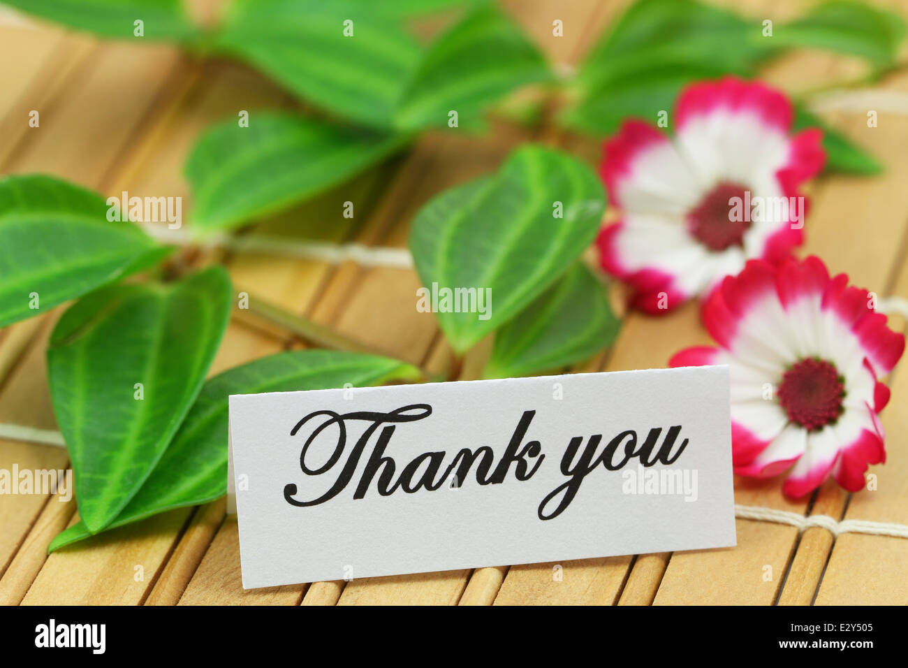 Thank You Card With Green Leaves And Daisy Flowers On Bamboo Mat