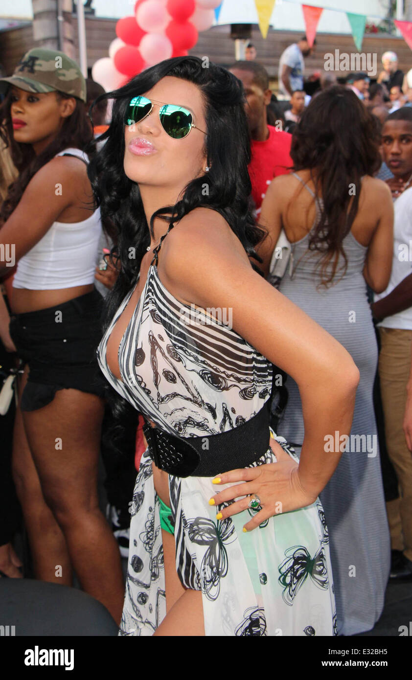 Suelyn Medeiros Nude Photos 33