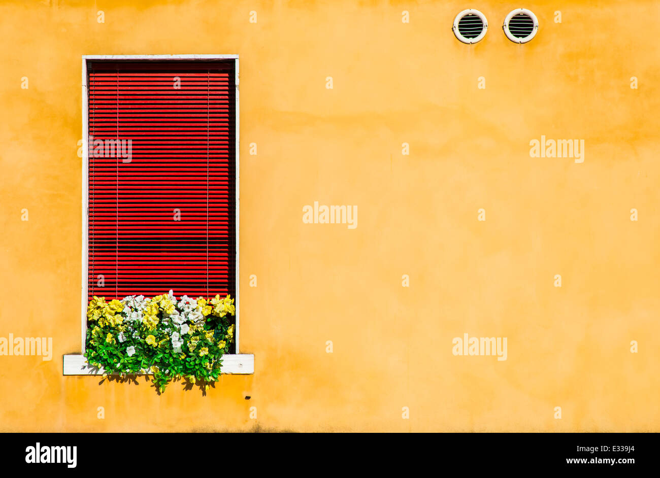 Venetian window with yellow flowers. Oragne color wall Stock Photo ...