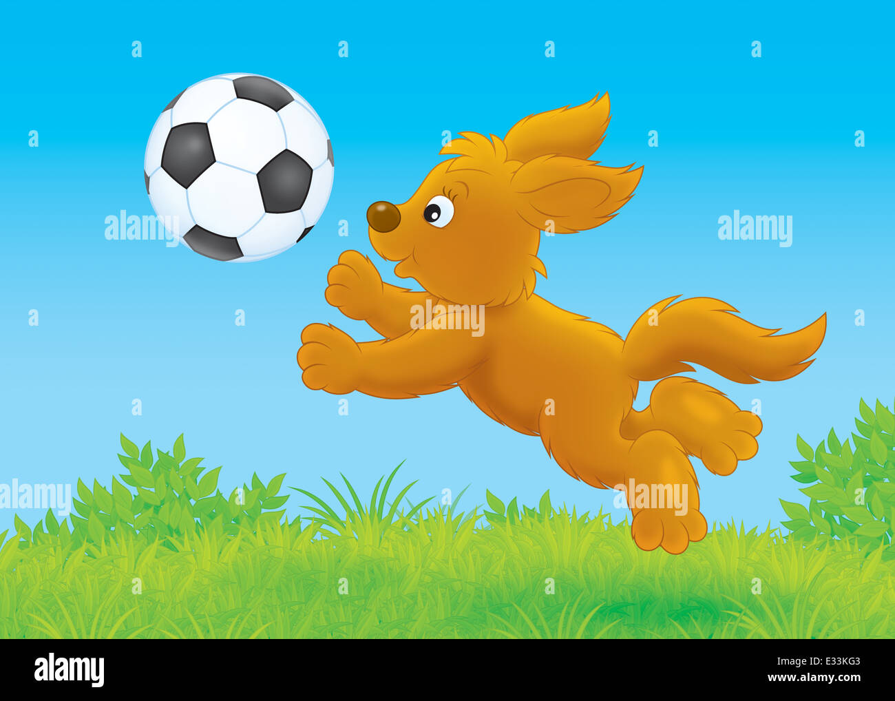 pup playing a ball stock image