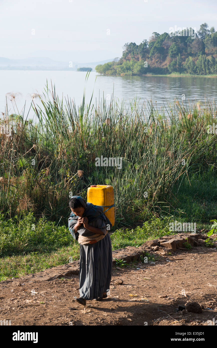 Women fetching water. Afaf. Zege Peninsula. Lake Tana. Northern Ethiopia. - Stock Image