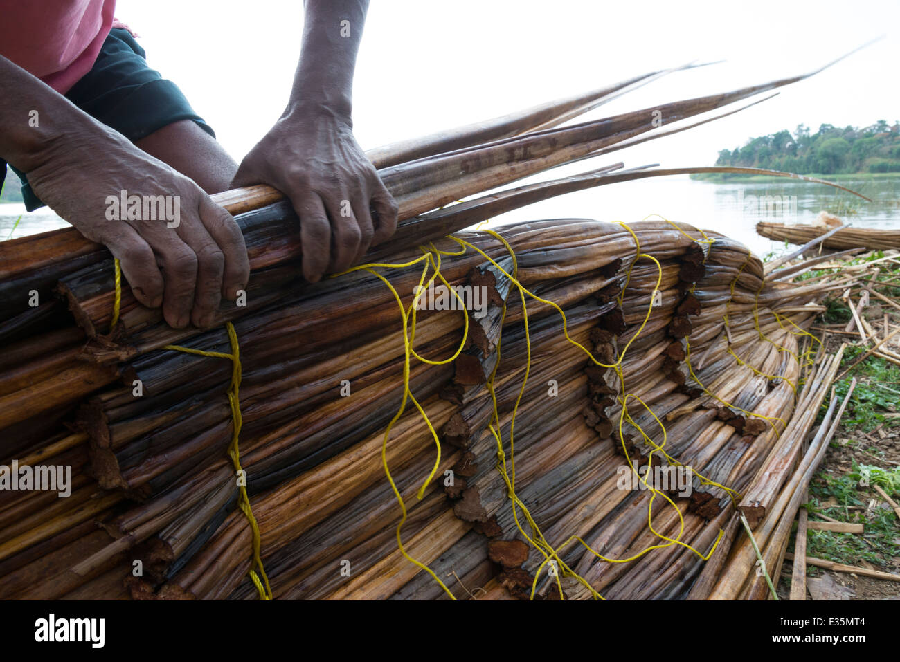 Making of a papyrus small boat. Zege peninsula. Lake Tana. Northern Ethiopia. - Stock Image