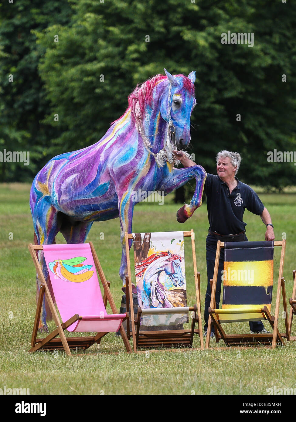 A Portuguese Lusitano called Tetua stands behind Ronnie Wood's Pegasus for the launch of Deckchair Dreams 2013, - Stock Image