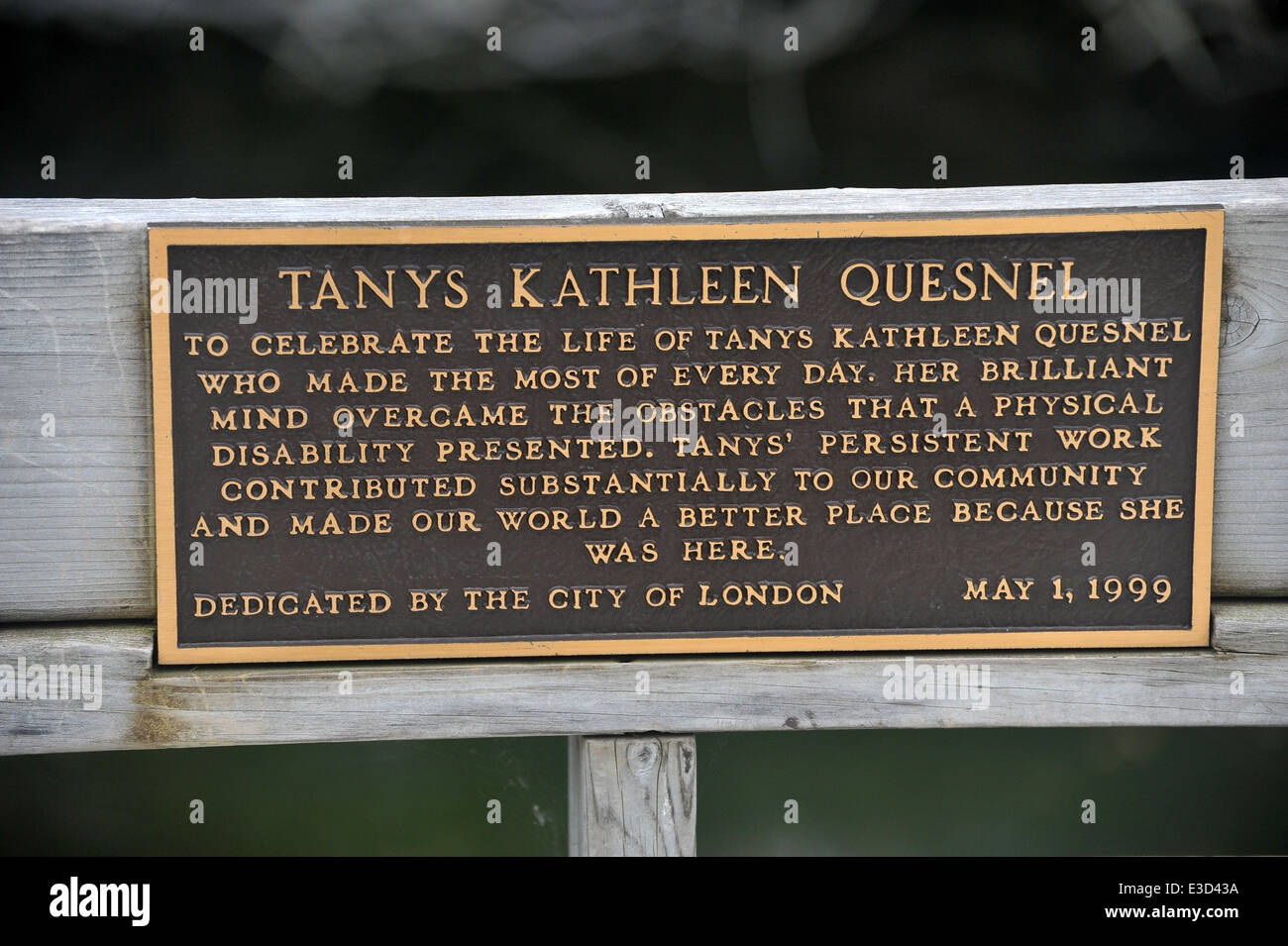 A Memorial Plaque On A Bench In A Park In London Ontario