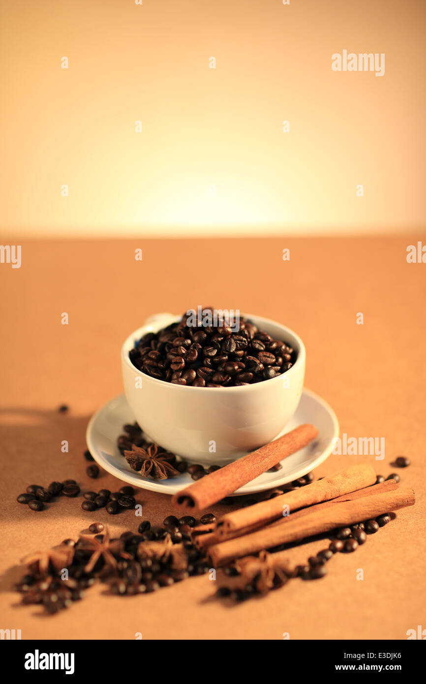 Coffee Beans and beautiful anise - Stock Image