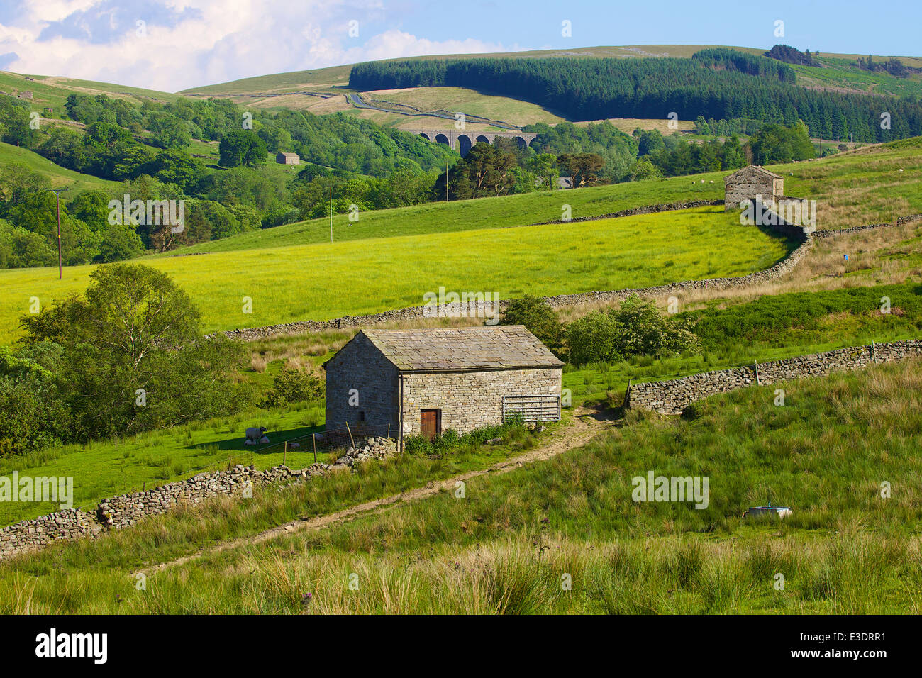 Stone barns near Dent Head Viaduct, Dent, Cumbria, Yorkshire Dales National Park, North Yorkshire, England, United - Stock Image