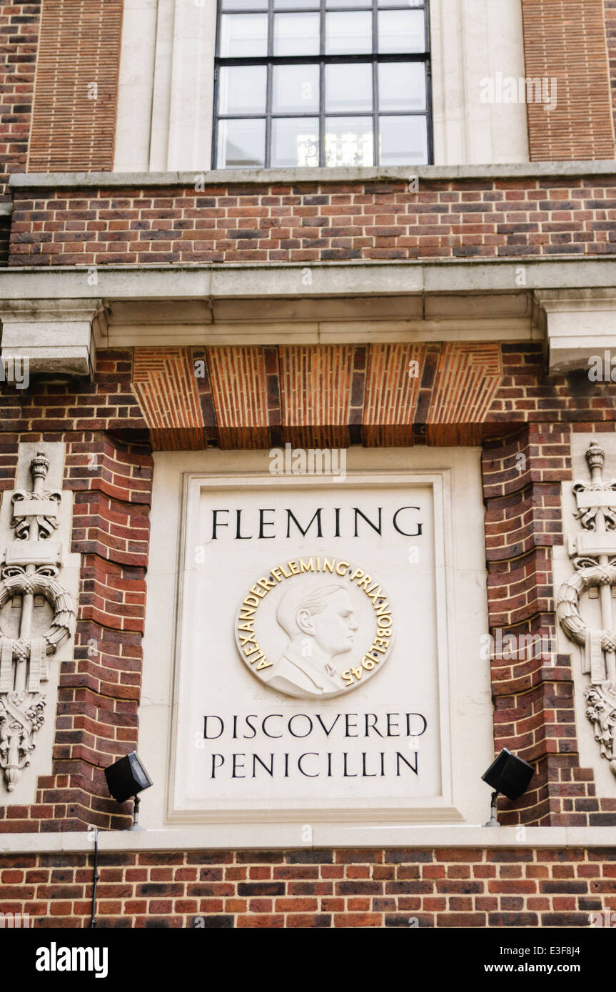 Stone memorial to Alexander Fleming at Imperial College London, where he discovered Penicillin - Stock Image