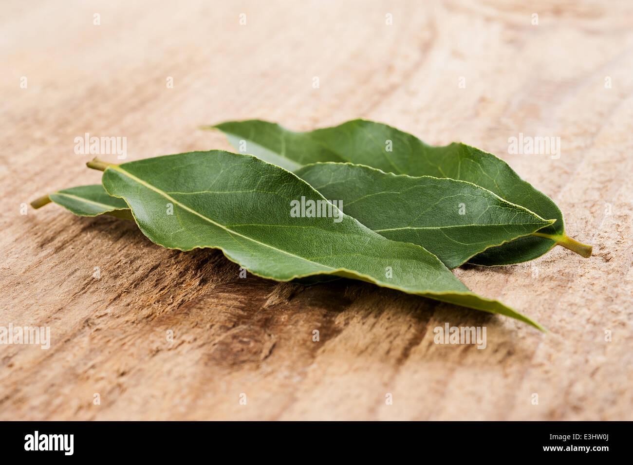 Laurel leaves on wood background - Stock Image