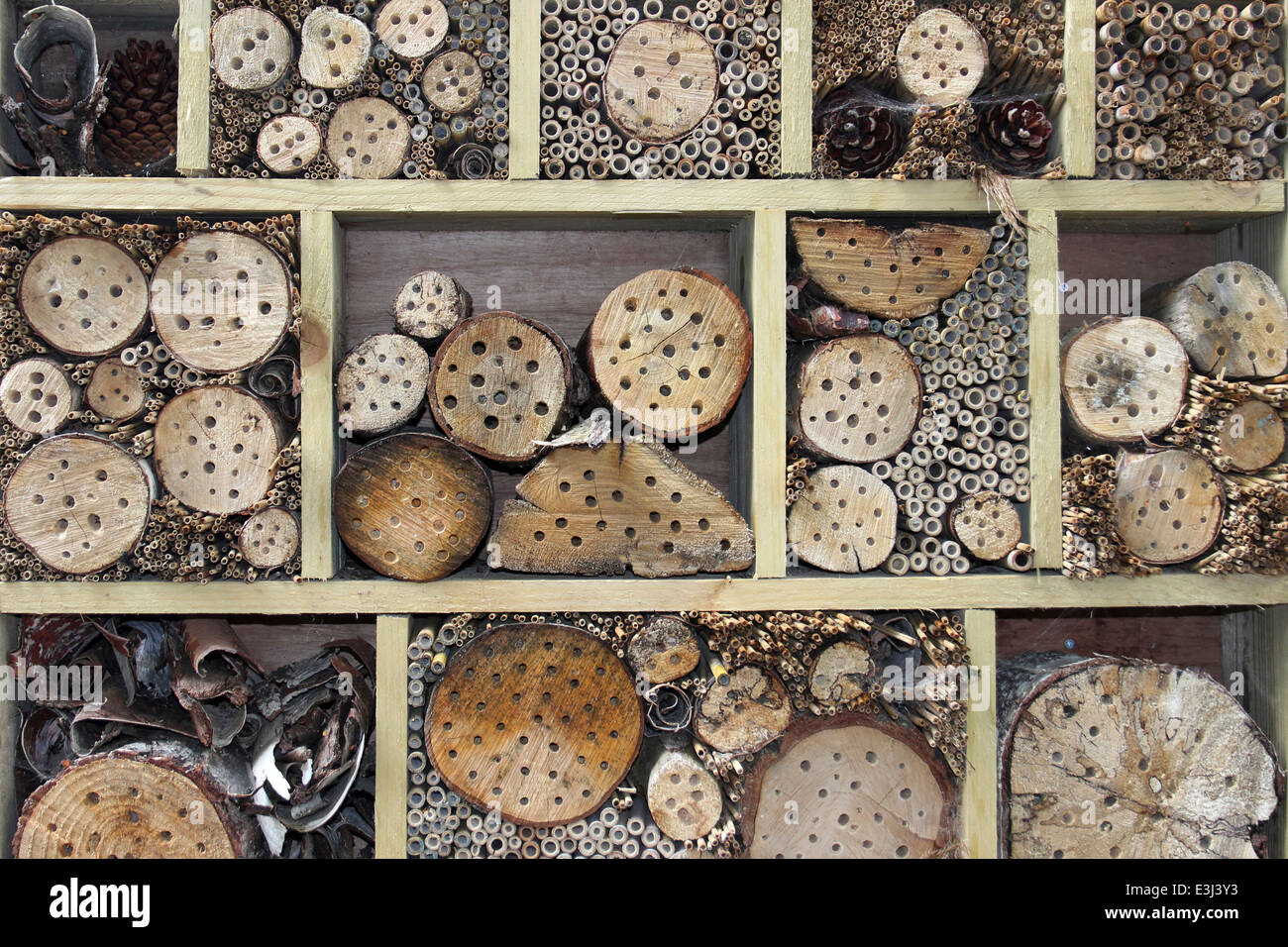 Bug House Providing Nesting Holes for A Variety Of Minibeasts Stock Photo