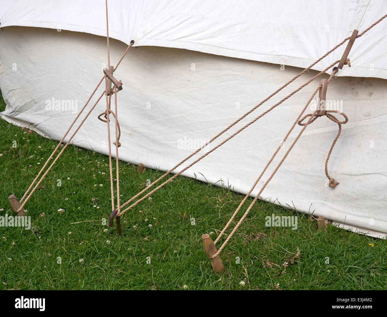 Old style canvas tent showing rope guy lines and carved wooden tent pegs. & Old style canvas tent showing rope guy lines and carved wooden tent ...