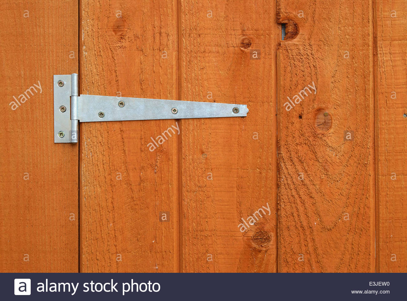 Metal hinge on a wooden shed door - Stock Image