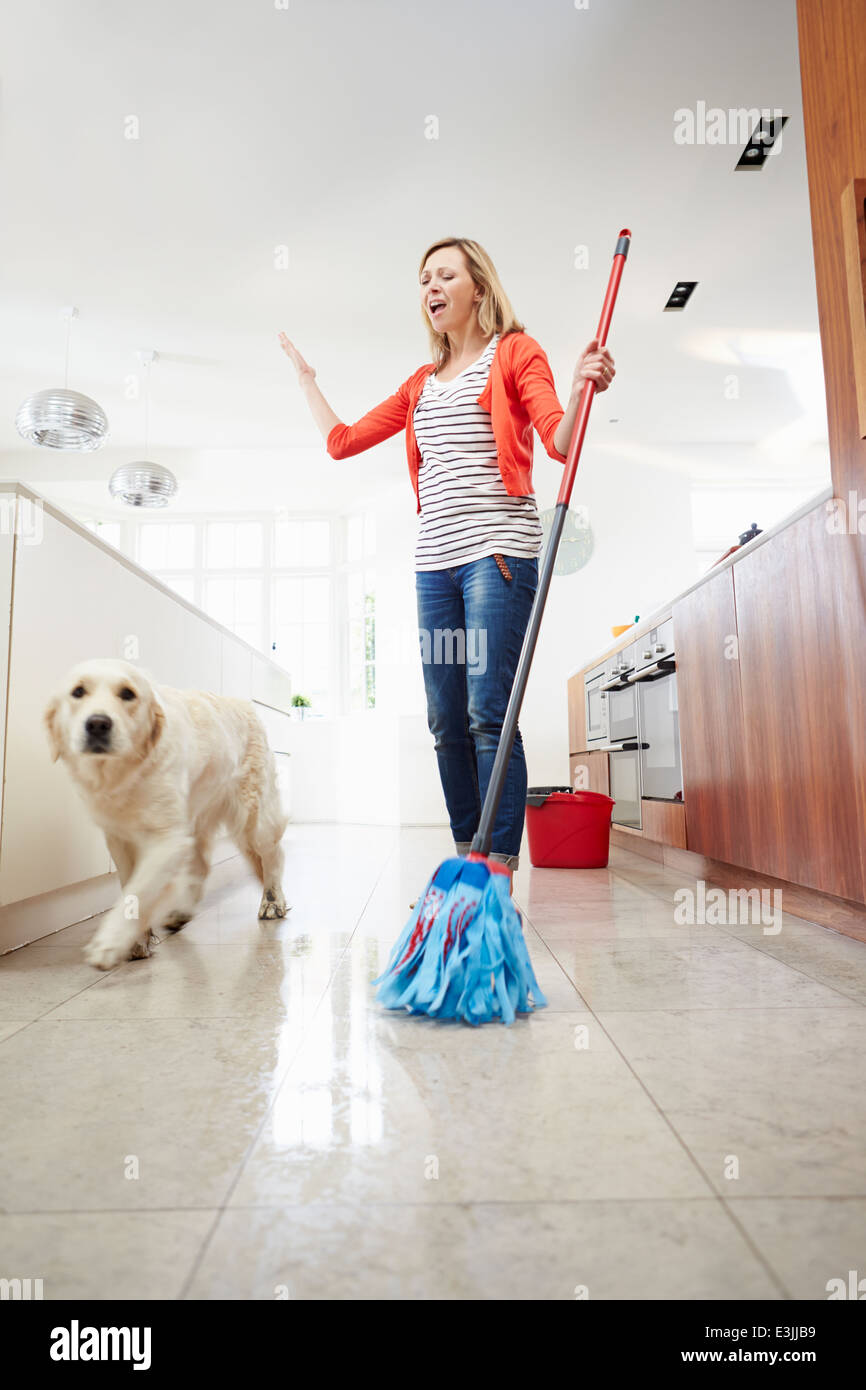 Dog Making Mess Of Newly Mopped Floor - Stock Image