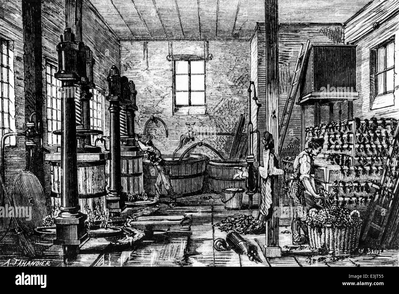 antique engraving of a tobacco manufactory' - Stock Image