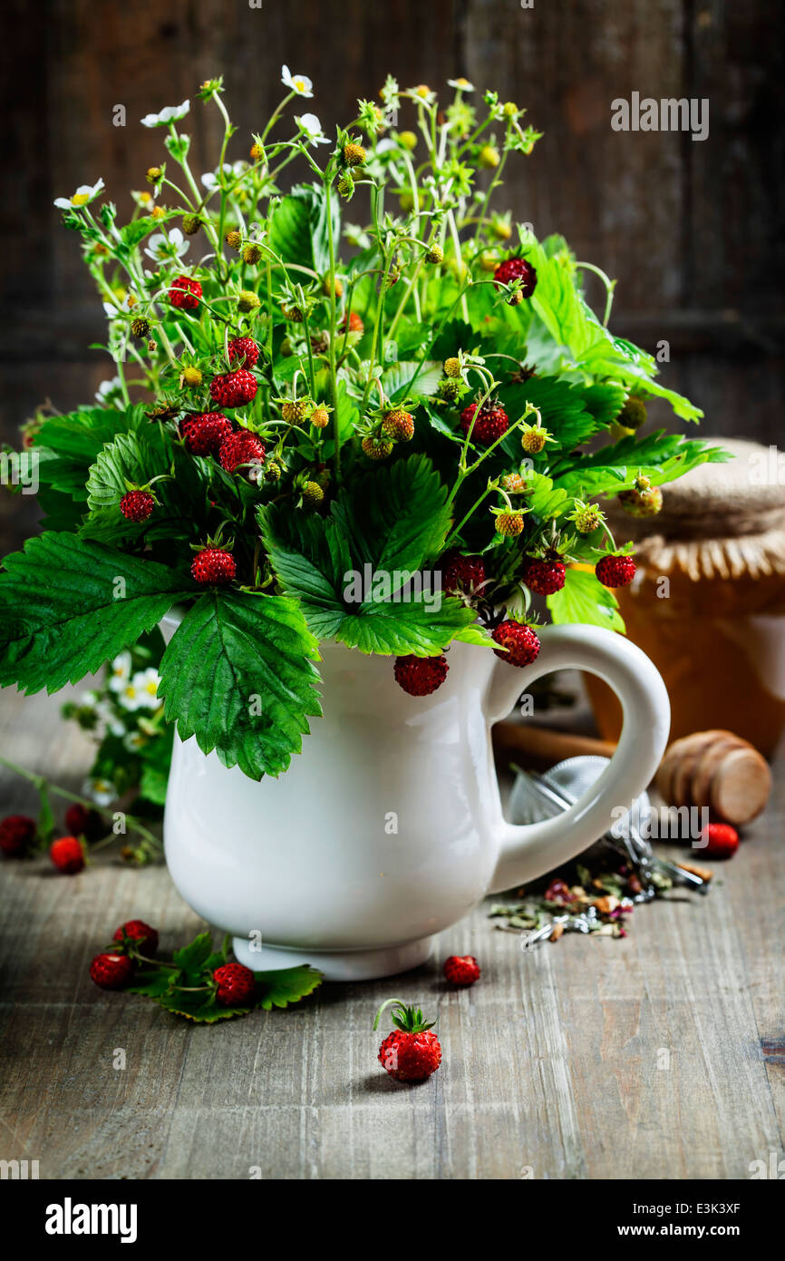 bouquet of wild strawberry with herbal tea and honey - bio food or health concept - Stock Image