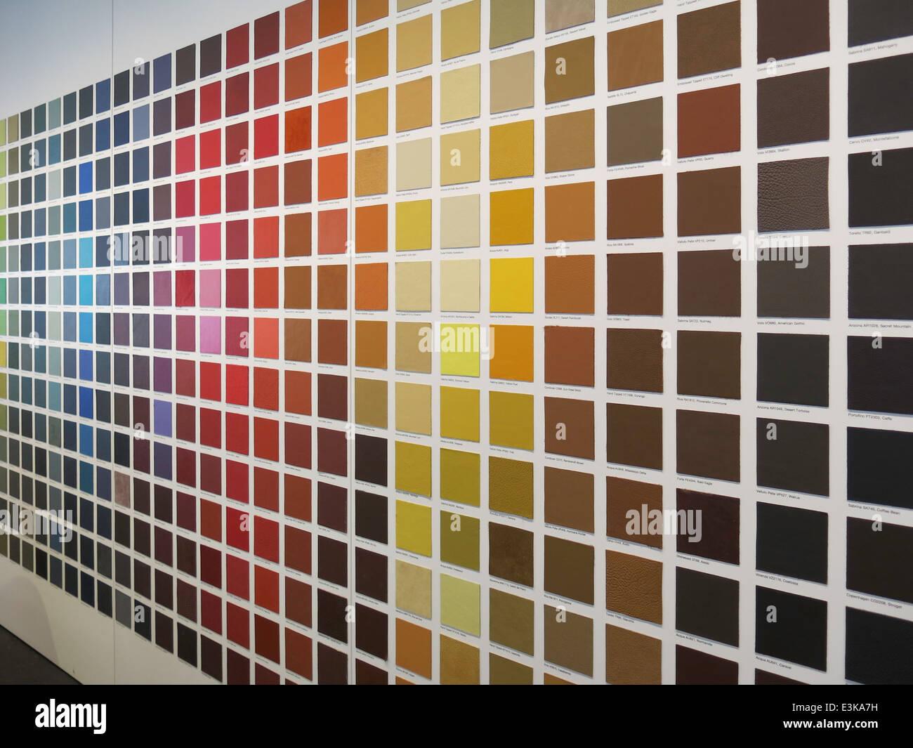 Color Sample Wall Display