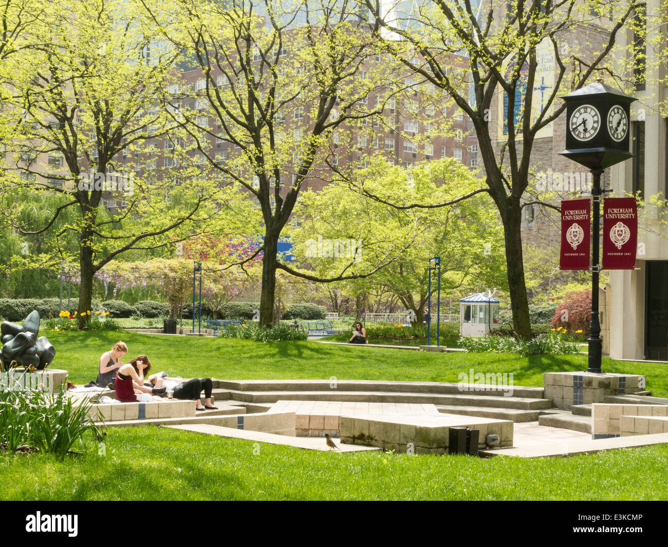 Fordham University Lincoln Campus Www Naturalrugs Store
