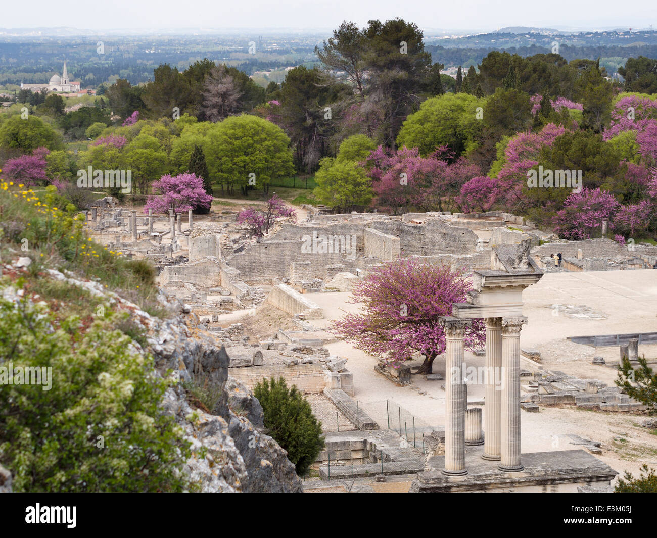 Ruins of Glanum site overview looking South. The extensive ruins of the Roman city in spring. Flowering trees punctuate. - Stock Image