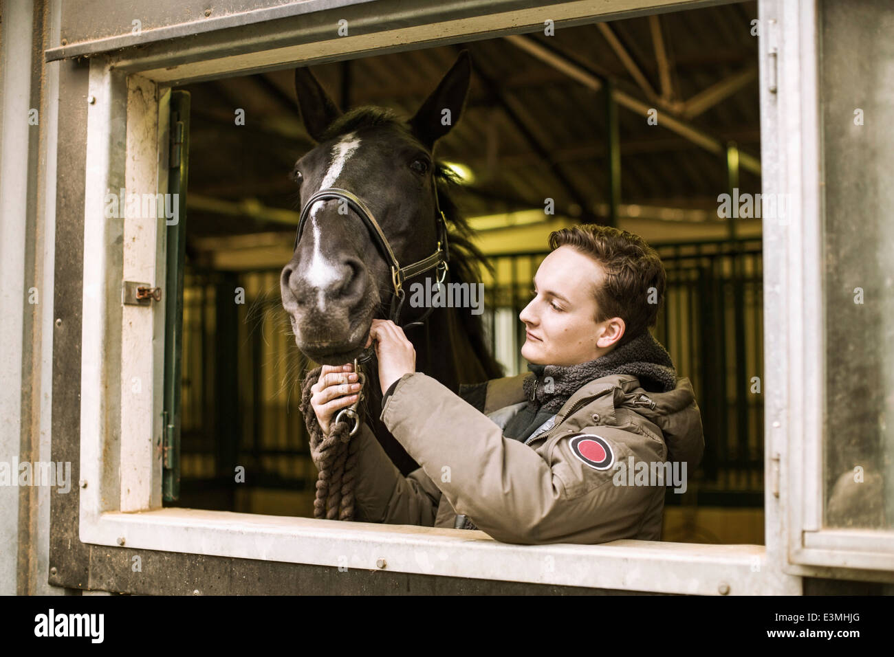 Young man with horse in stable - Stock Image