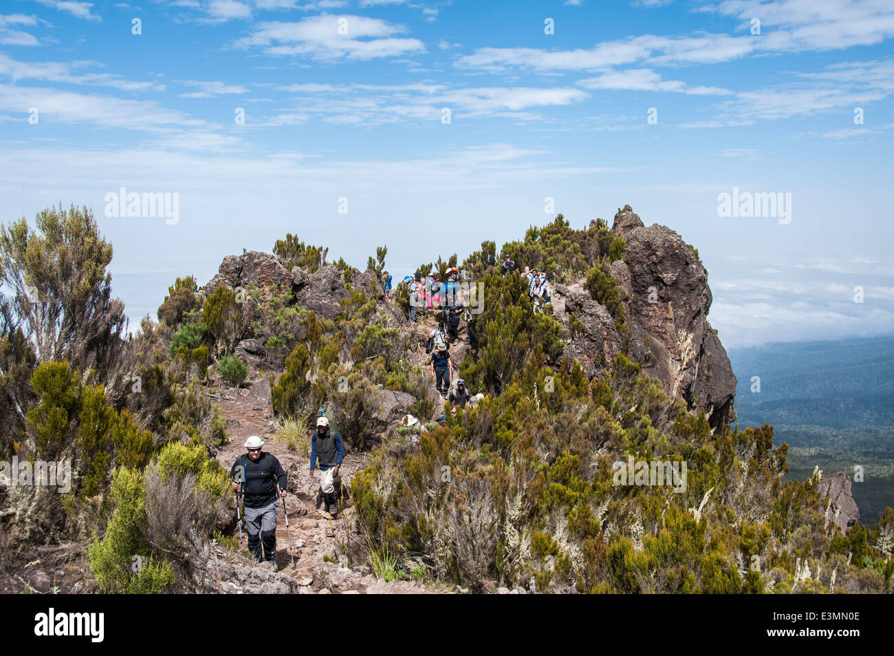Group moving above the clouds on the ridge leading to Shira camp on Kilimanjaro - Stock Image