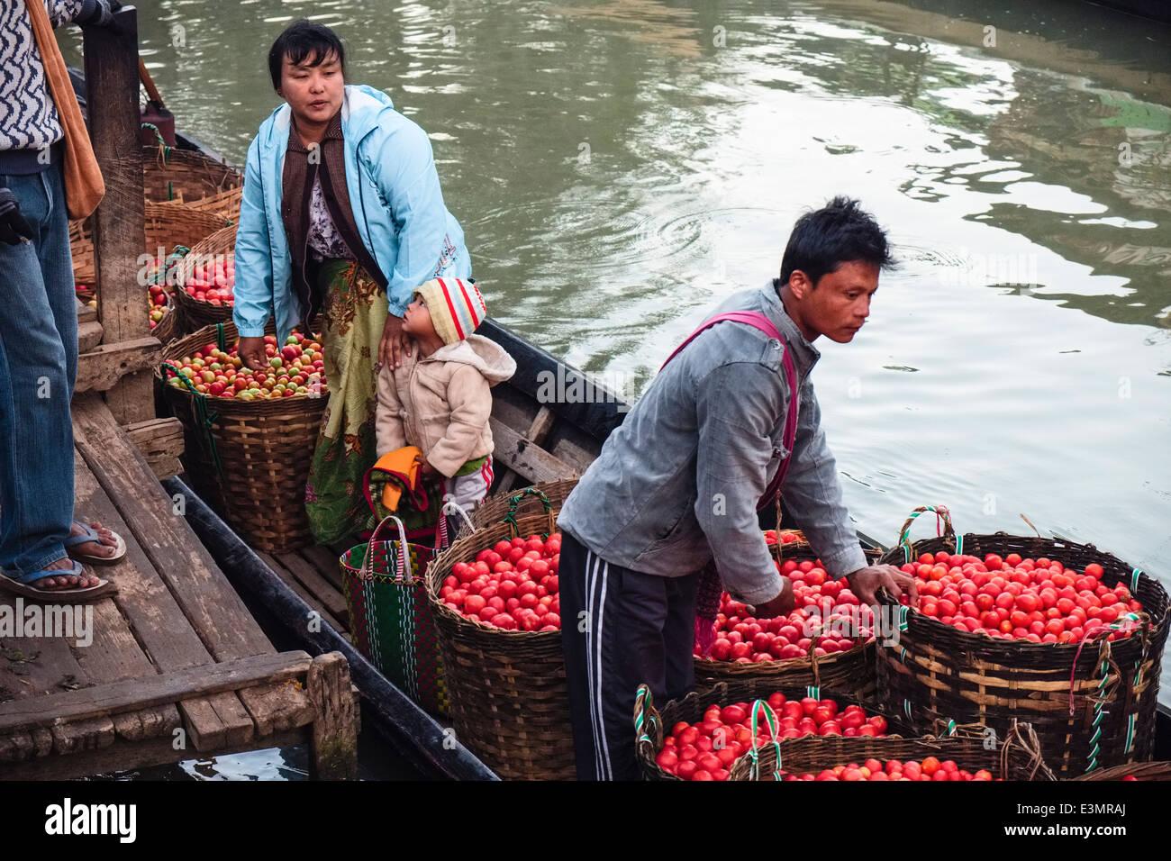 Farmers unload tomatoes, Nyaung Shwe, Inle Lake, Myanmar, Asia - Stock Image