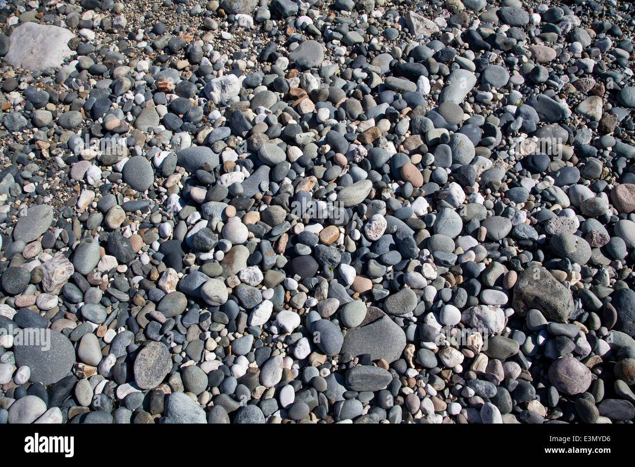 Pebbles and rocks on a stony beach at low tide - Stock Image