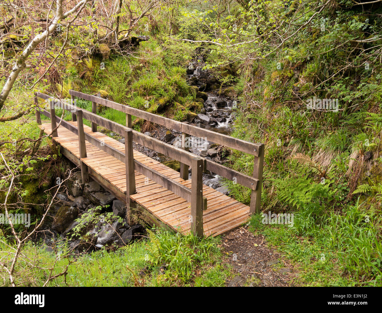 wooden footbridge over tumbling woodland stream kinloch forest