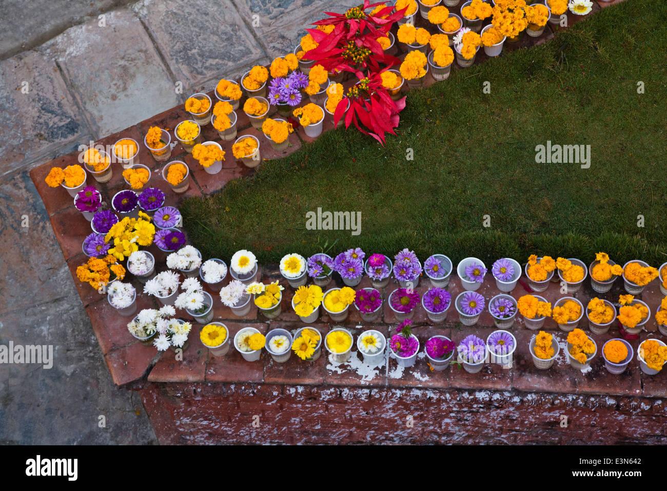 Flower offerings at BODHANATH STUPA - KATMANDU, NEPAL - Stock Image