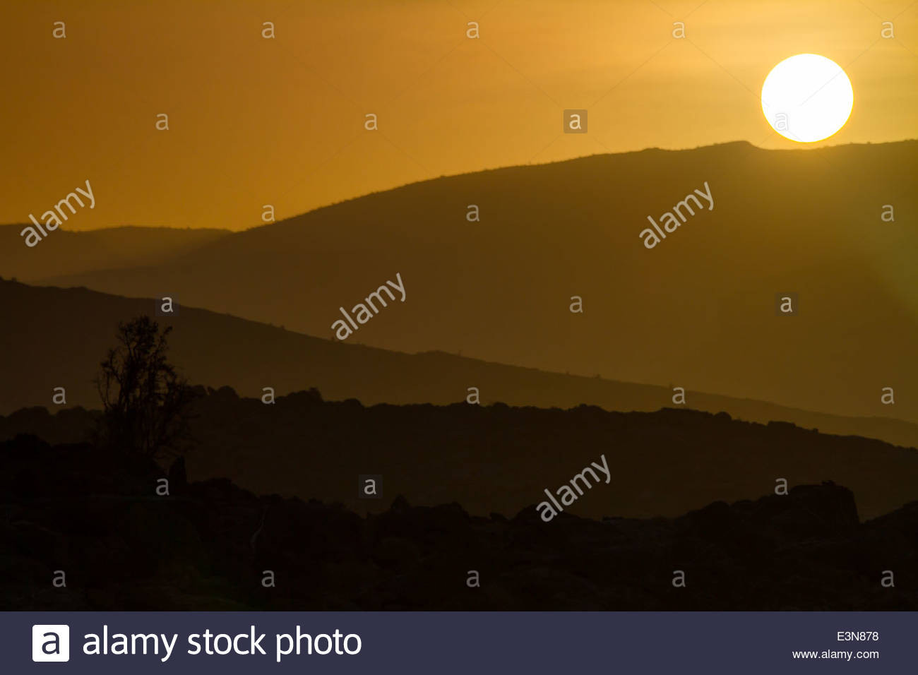 View of national park at sunrise - Oman - Stock Image