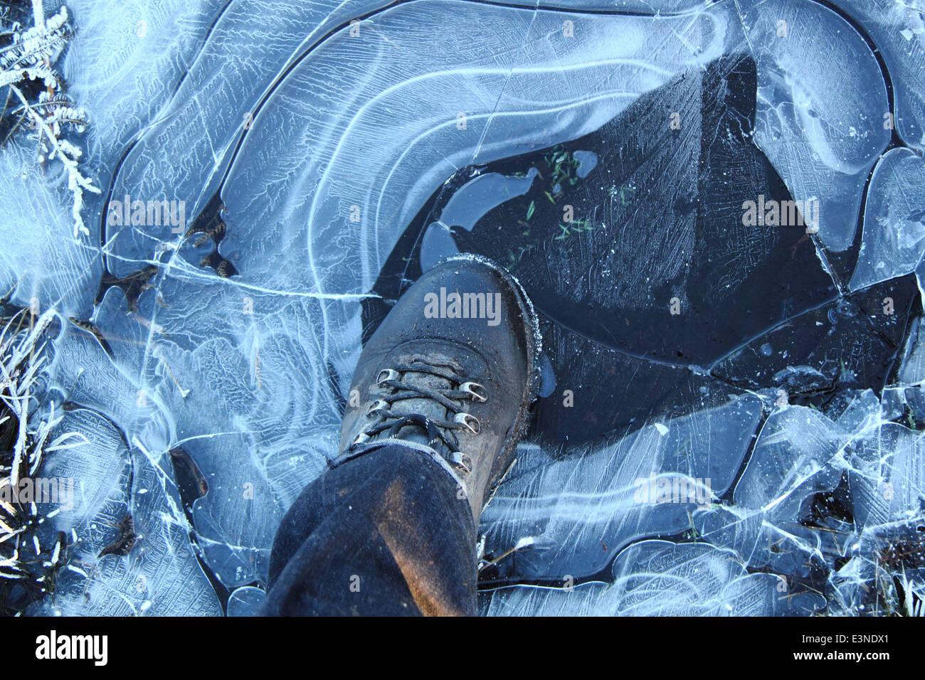 Female walker steps on thin ice on moorland int he Peak District, Derbyshire, England, UK - winter - Stock Image