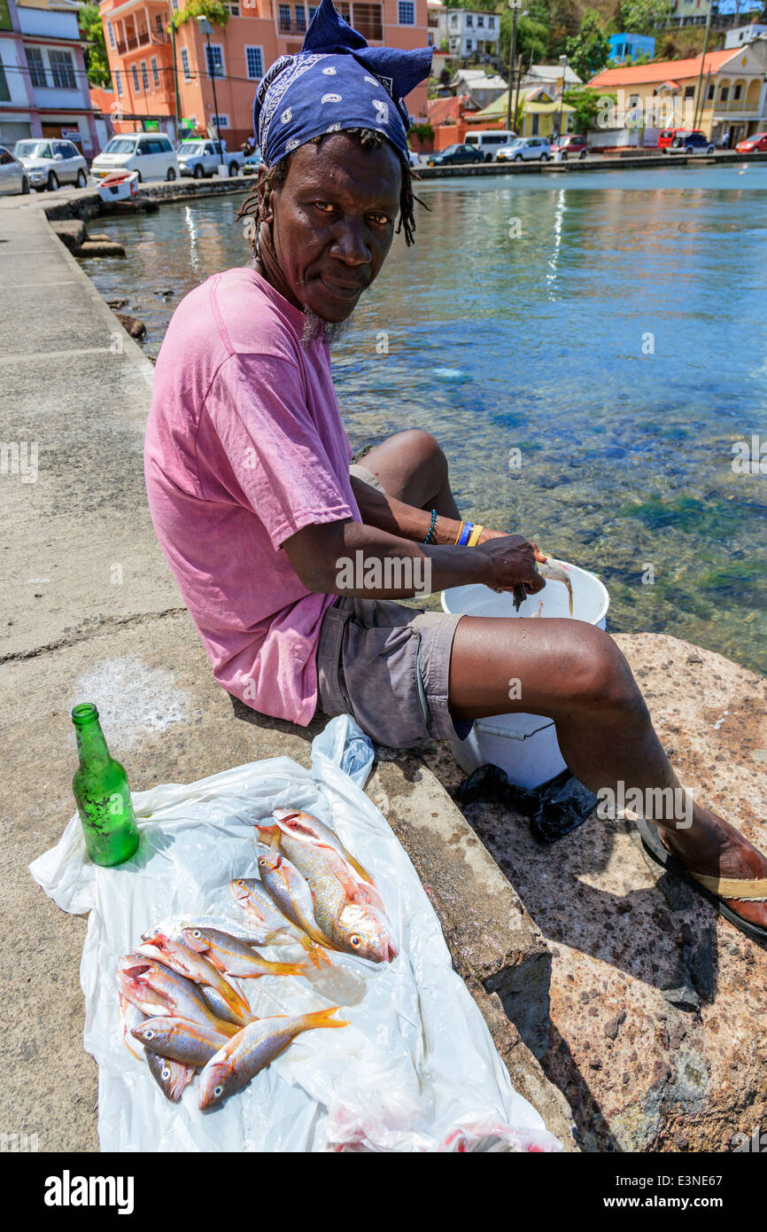 Local fisherman sitting on the promenade and gutting fish at Carenage bay, St George, Grenada, West Indies Stock Photo