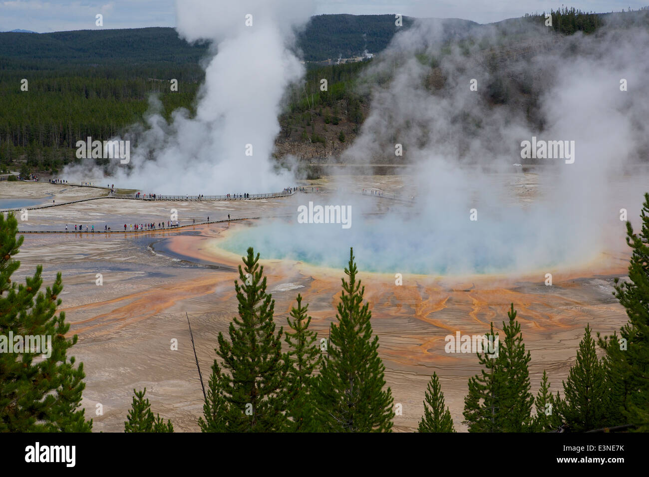 View down onto the Grand Prismatic Spring situated in the Midway Geyser Basin in Yellowstone National Park - Stock Image
