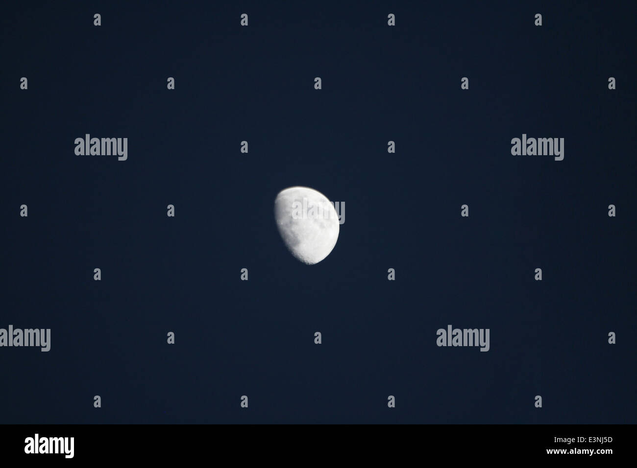 Mond bei Nacht - Stock Image