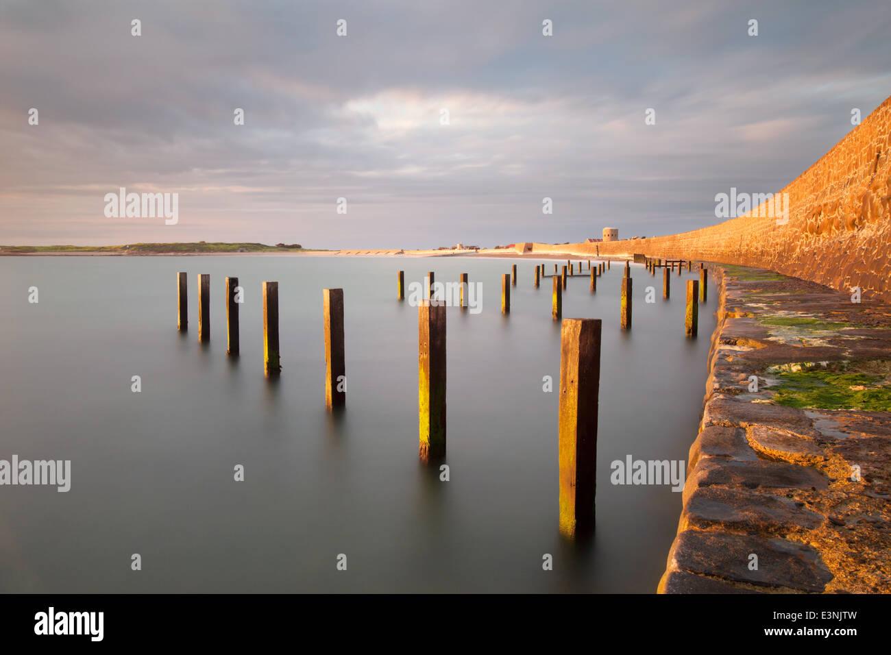 Vazon bay sea defence posts Guernsey - Stock Image