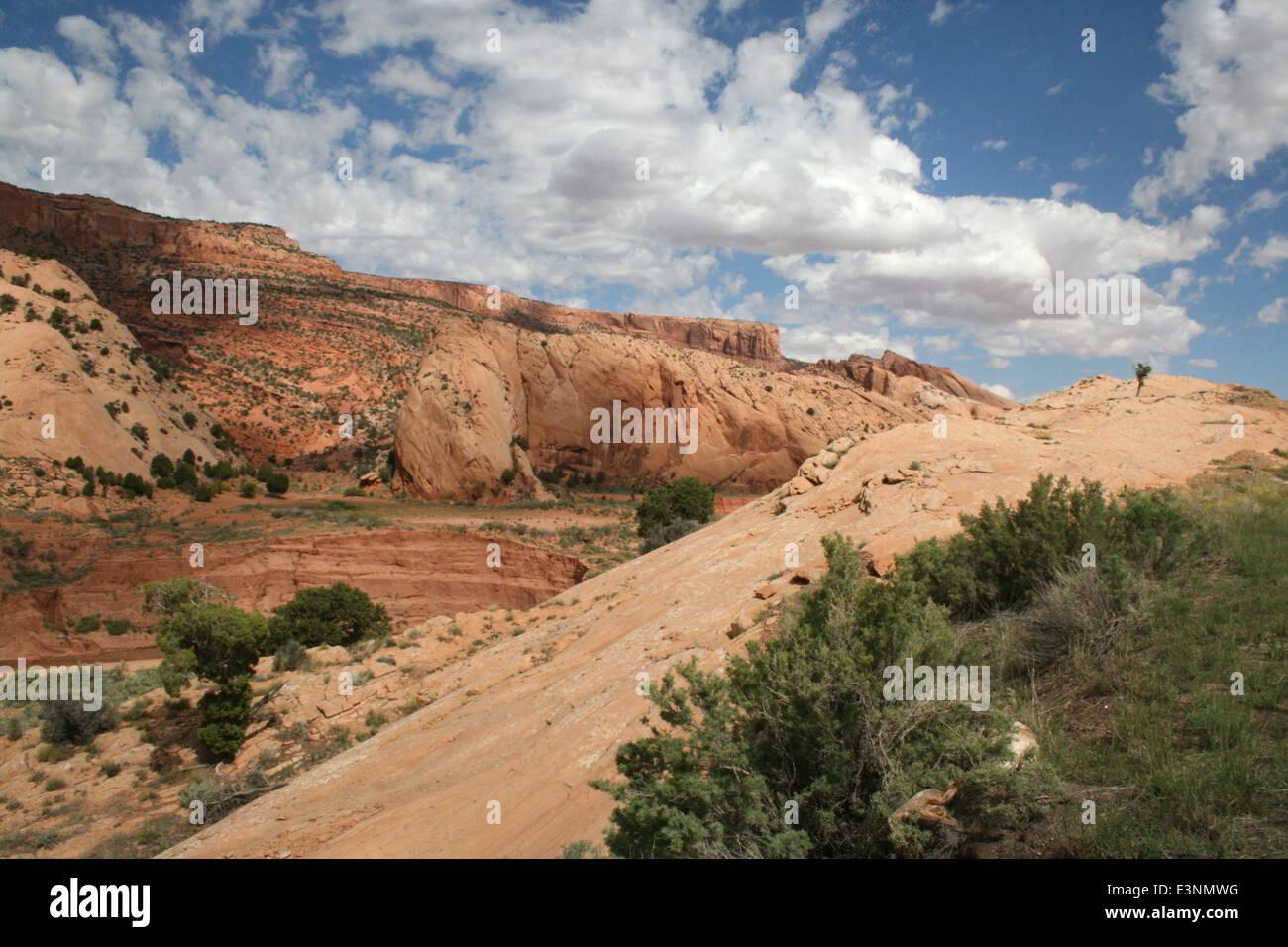 Zion Nationalpark Landschaft Stock Photo