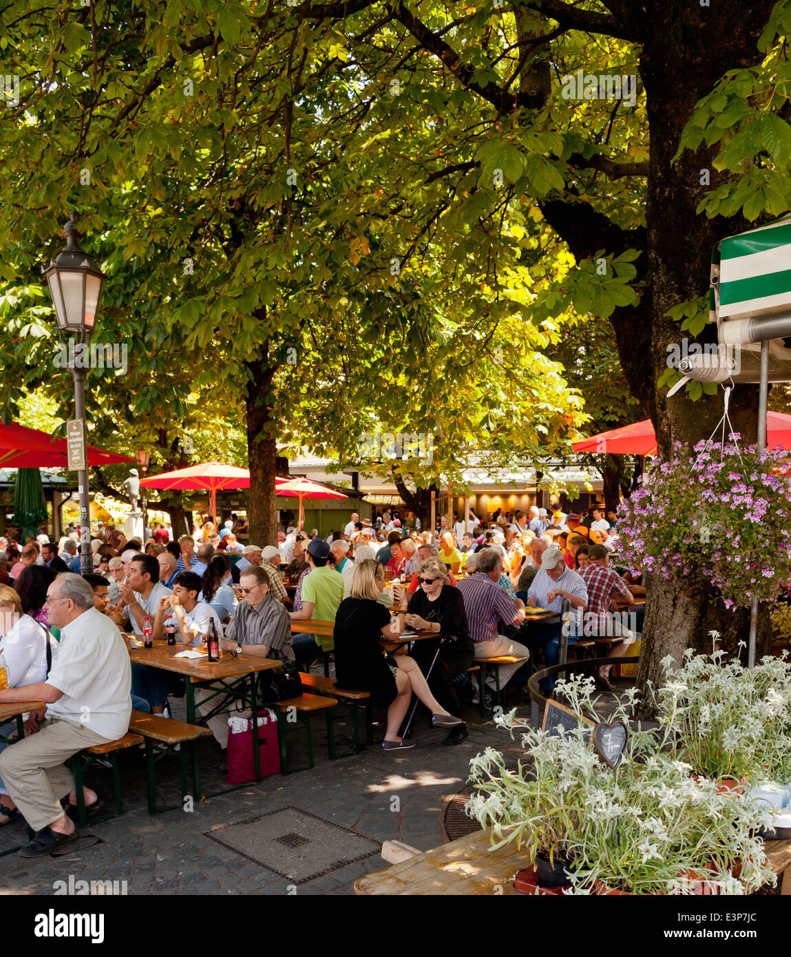 Munich, Viktualienmarkt beer garden - Munich, Bavaria, Germany, Europe - Stock Image