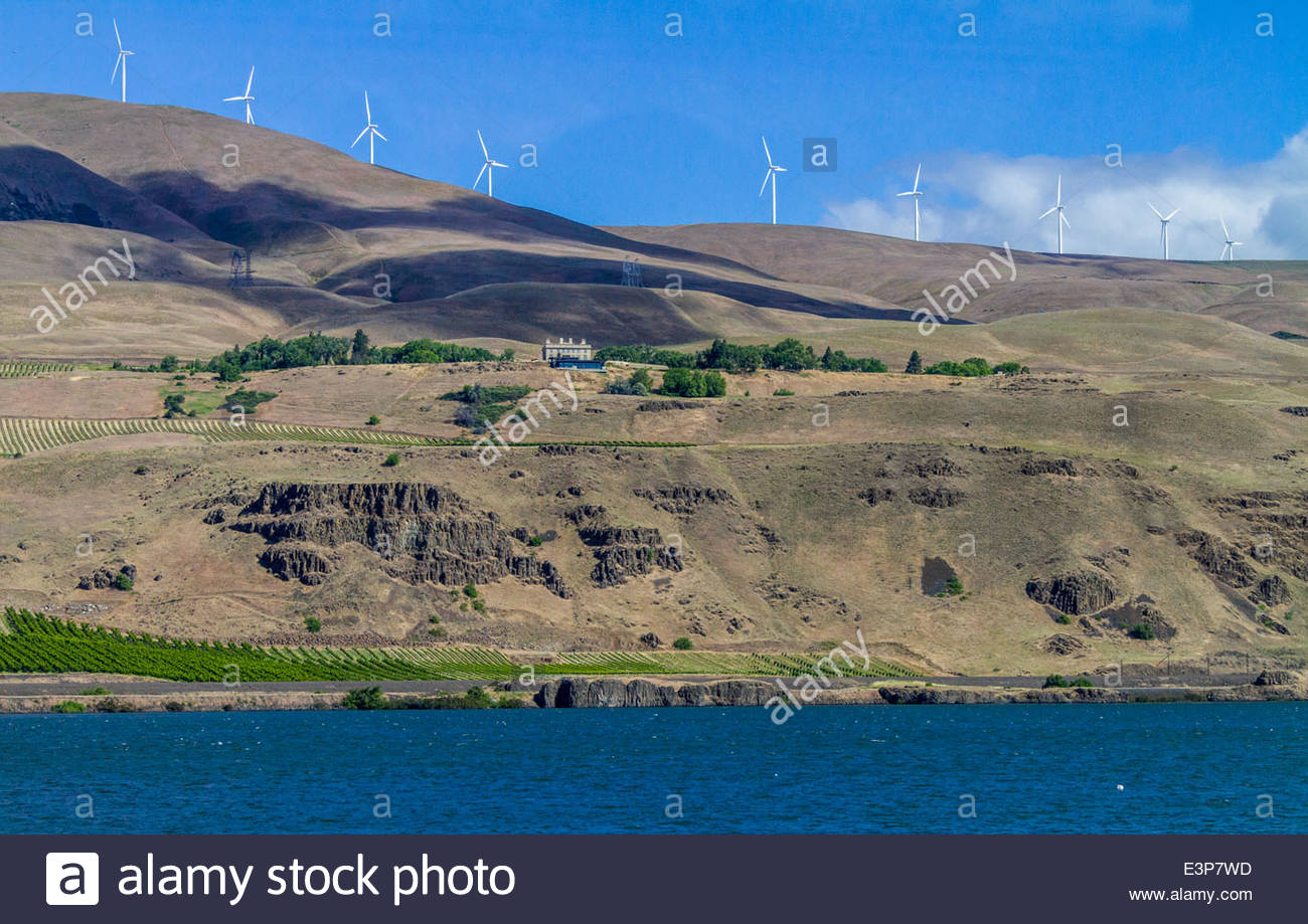 Wind Turbines Above The Columbia River And Mary Hill Museum, Washington, USA - Stock Image