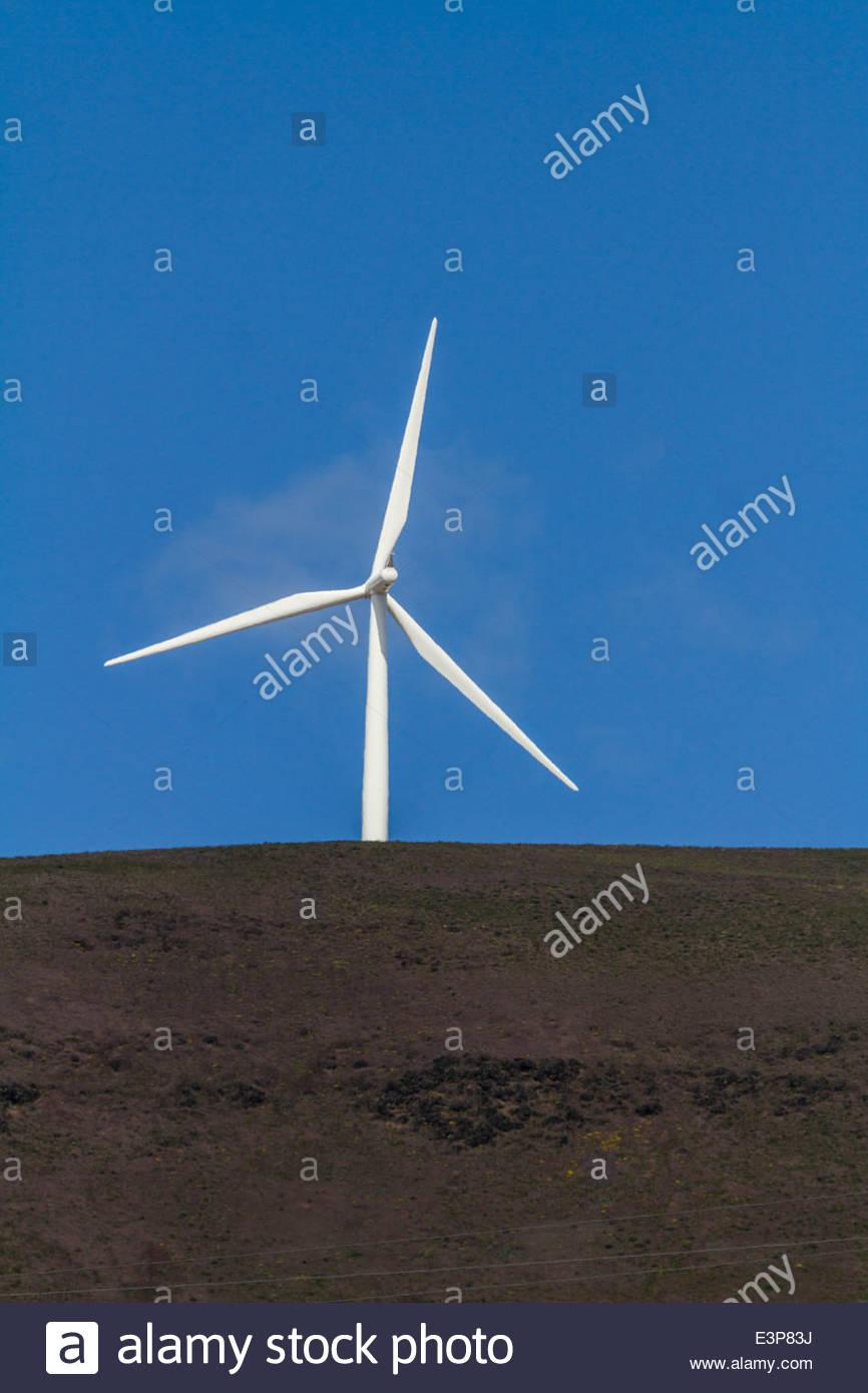 Solitary Wind Turbine On A Hill, Washington, USA - Stock Image