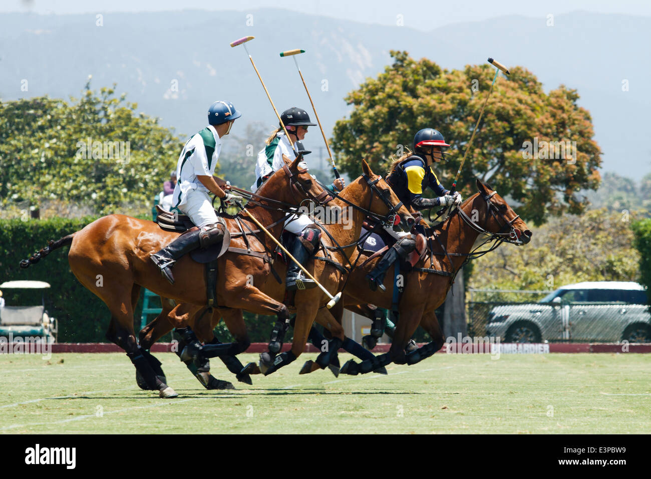 Polo teams race down field in pursuit of the ball - Stock Image