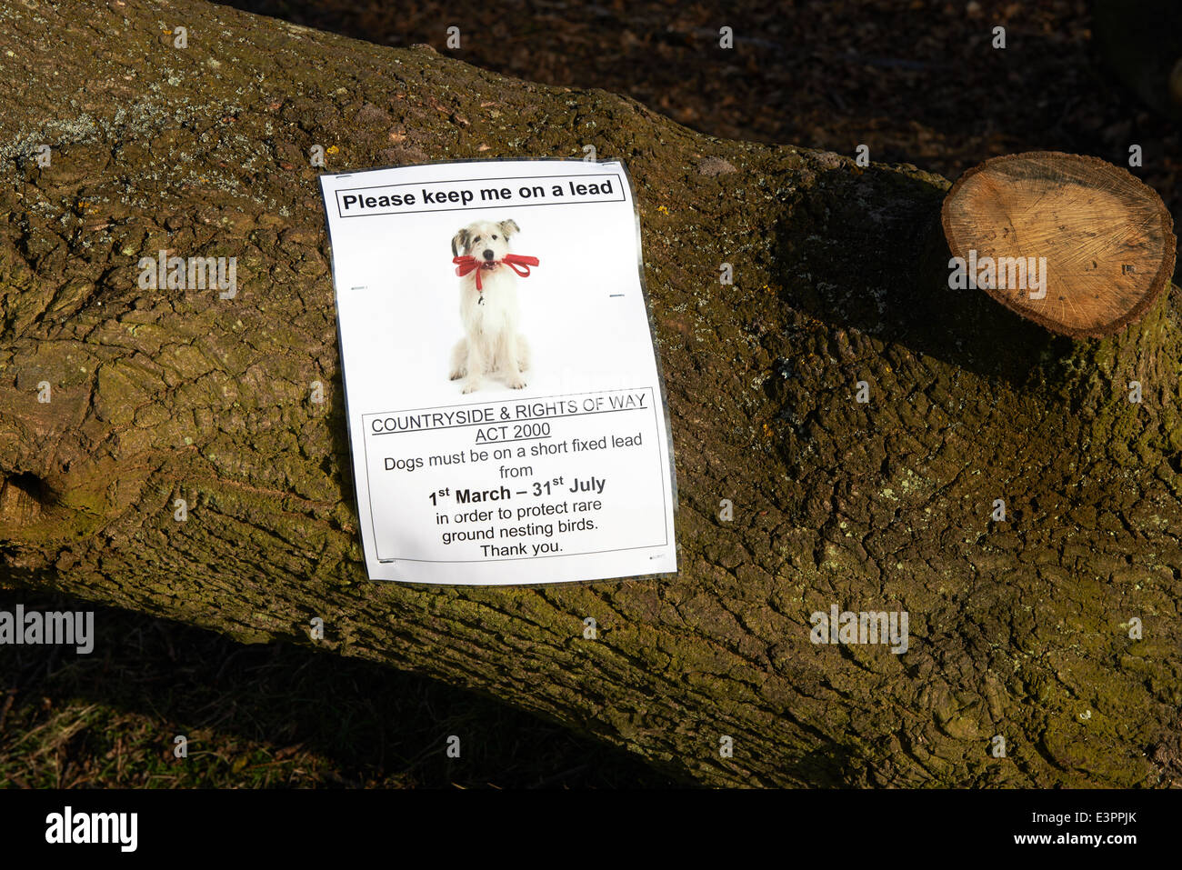 Countryside & Rights of way act 2000 sign telling walkers that dogs must be kept on a lead between March & - Stock Image