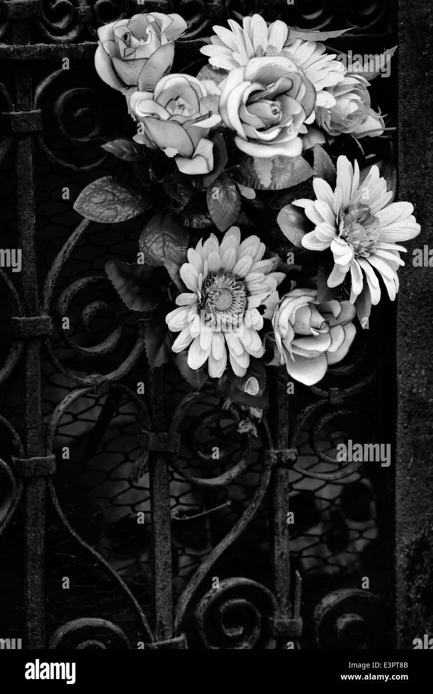 Memento mori - Stock Image