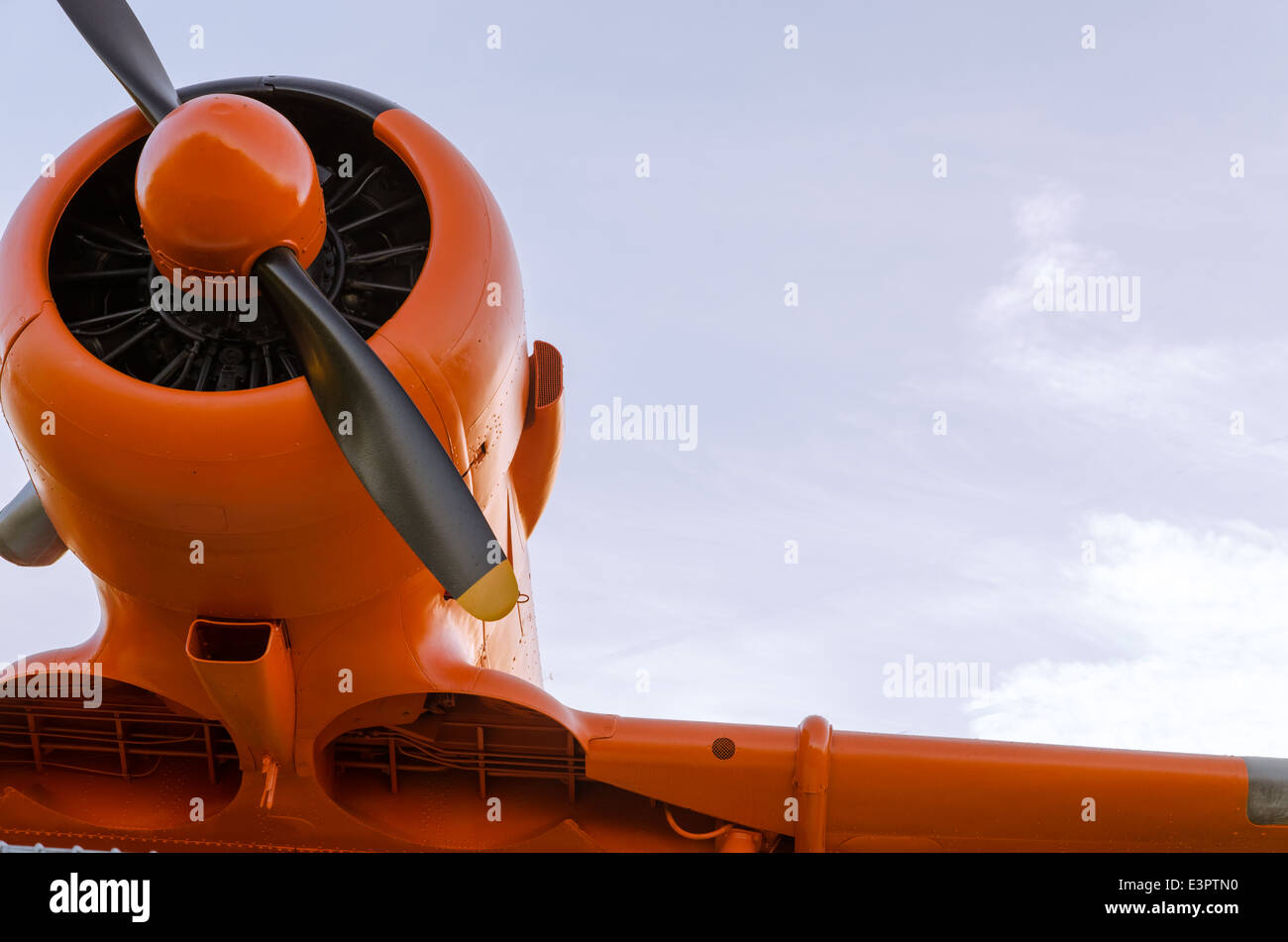 Adventure in the sky, Old airplane, orange, North American T-6G Texan - Stock Image
