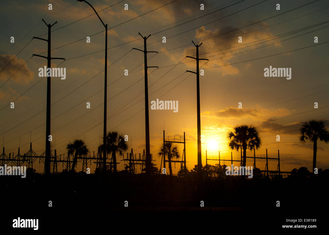 Telephone poles and powerlines at power plant in Sanford Florida - Stock Image