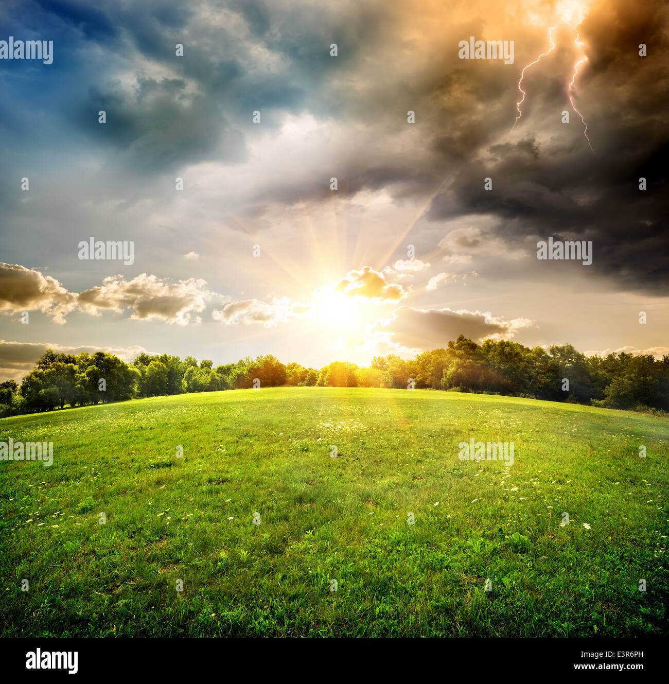 Bright lightning over the field and forest - Stock Image