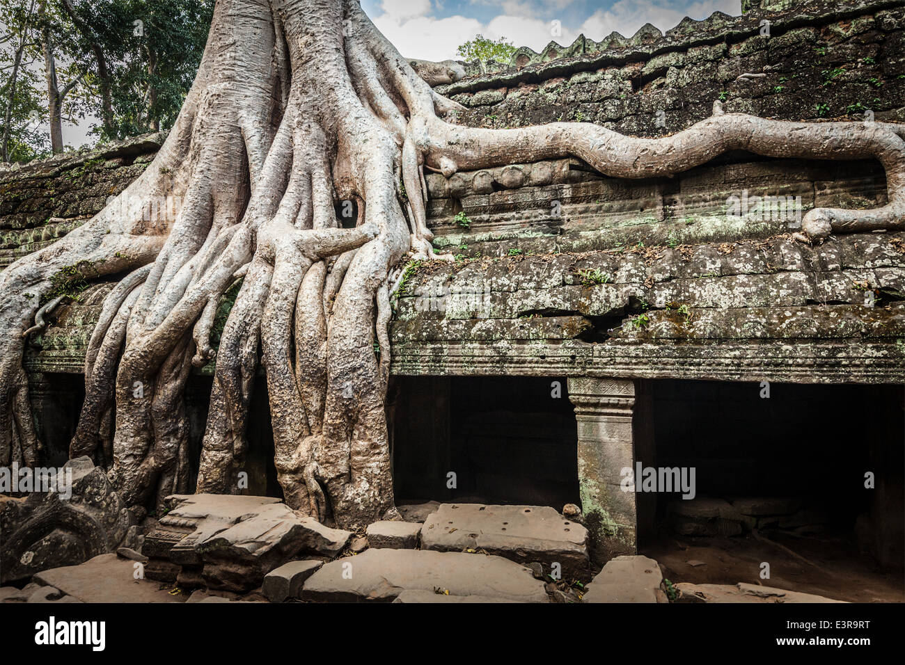 Travel Cambodia concept background - ancient stone door and tree roots, Ta Prohm temple ruins, Angkor, Cambodia - Stock Image
