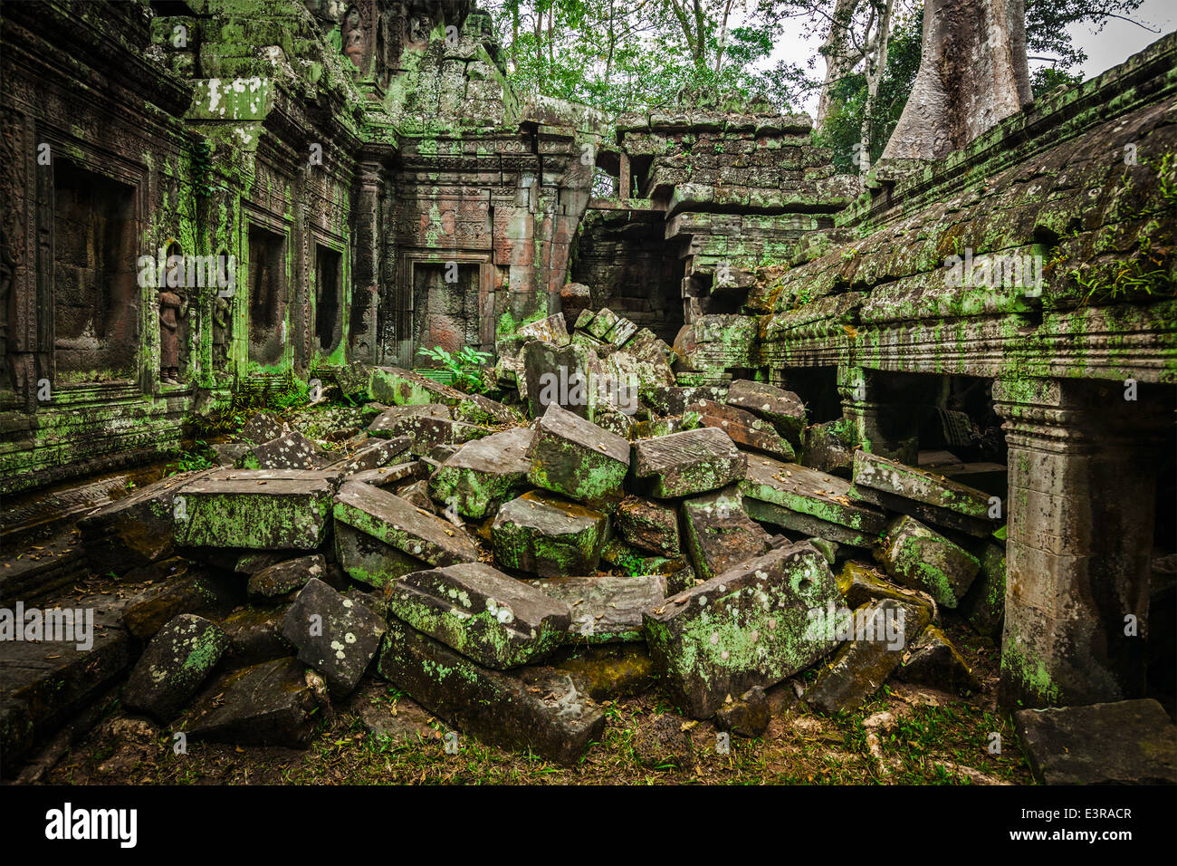 High dynamic range (hdr) image of ancient stone ruins of Ta Prohm temple, Angkor, Cambodia - Stock Image