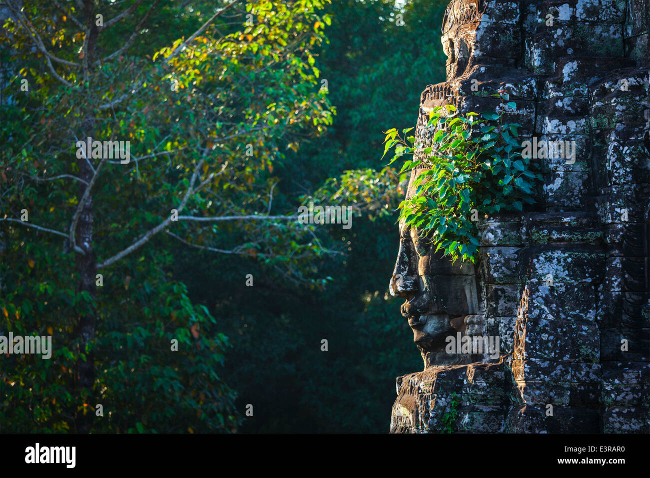 Ancient stone face of Bayon temple, Angkor, Cambodia with growing plants - Stock Image