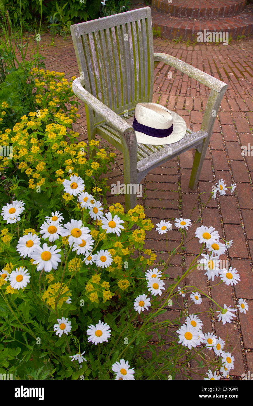 Old garden chair and panama hat with Ox-eye daises and euphorbia June Norfolk - Stock Image
